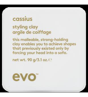 evo Cassius Styling Clay Standus molis, 90g | inbeauty.lt