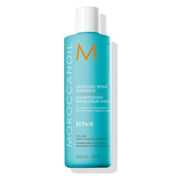 Moisture Repair Shampoo Atkuriamasis šampūnas pažeistiems plaukams, 250ml