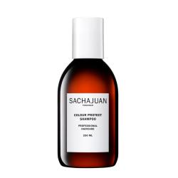 Colour Protect Šampūnas dažytiems plaukams, 250 ml