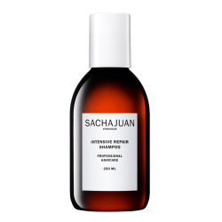 Intensive Repair Atkuriamasis šampūnas sausiems ir pažeistiems plaukams, 250 ml