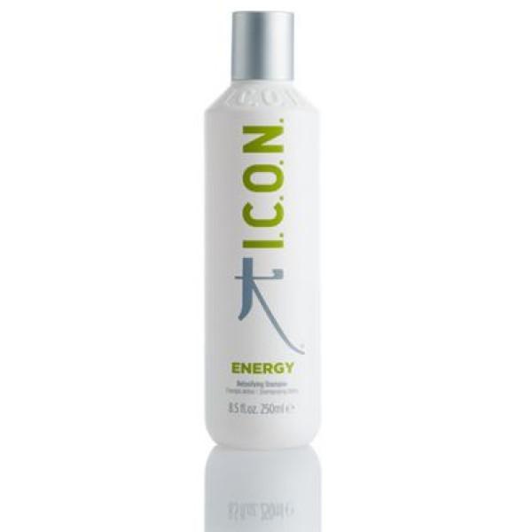Energy Detoxifying Shampoo Giliai valantis šampūnas, 250ml