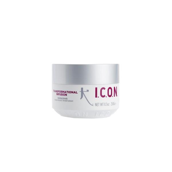 Transformational Infusion Hydrating Remedy Maitinanti plaukų kaukė, 250ml