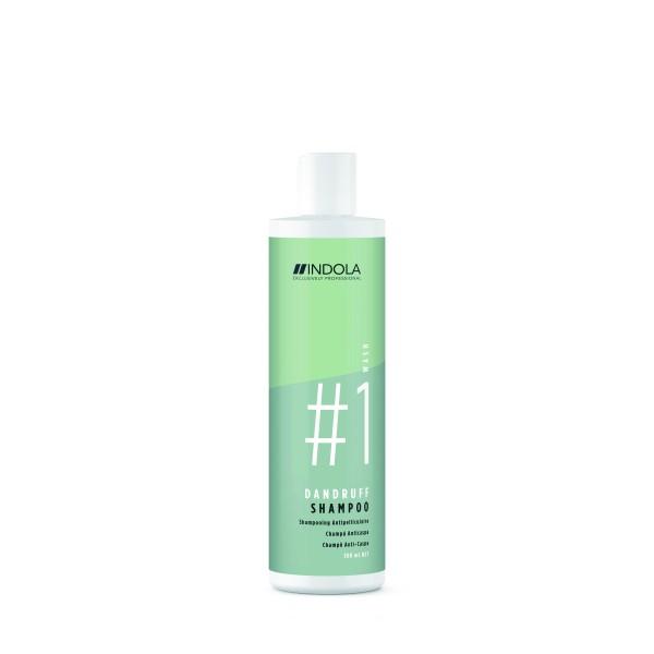 Dandruff Shampoo Plaukų šampūnas nuo pleiskanų, 300ml