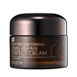 Multifunction Formula Snail Repair Perfect Cream Atkuriamasis veido kremas su sraigių ekstraktu, 50 ml