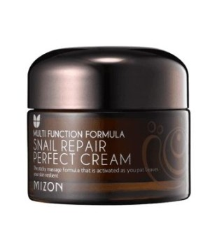Mizon Multifunction Formula Snail Repair Perfect Cream Atkuriamasis veido kremas su sraigių ekstraktu, 50 ml | inbeauty.lt