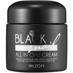 Black Snail All In One Cream Daugiafunkcinis veido kremas su juodųjų sraigių filtratu, 75 ml