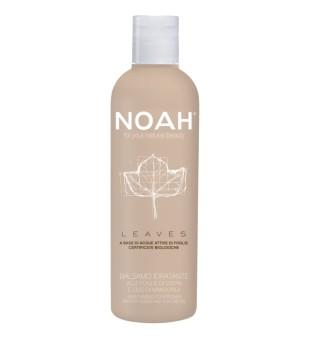 Noah LEAVES Moisturizing Conditioner Drėkinantis kondicionierius su gebenės lapais ir migdolų aliejumi, 250 ml  | inbeauty.lt