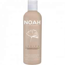 Stiprinantis šampūnas brandiems plaukams su ginkmedžio lapais, 200 ml